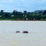 Hippos in Lake Tana